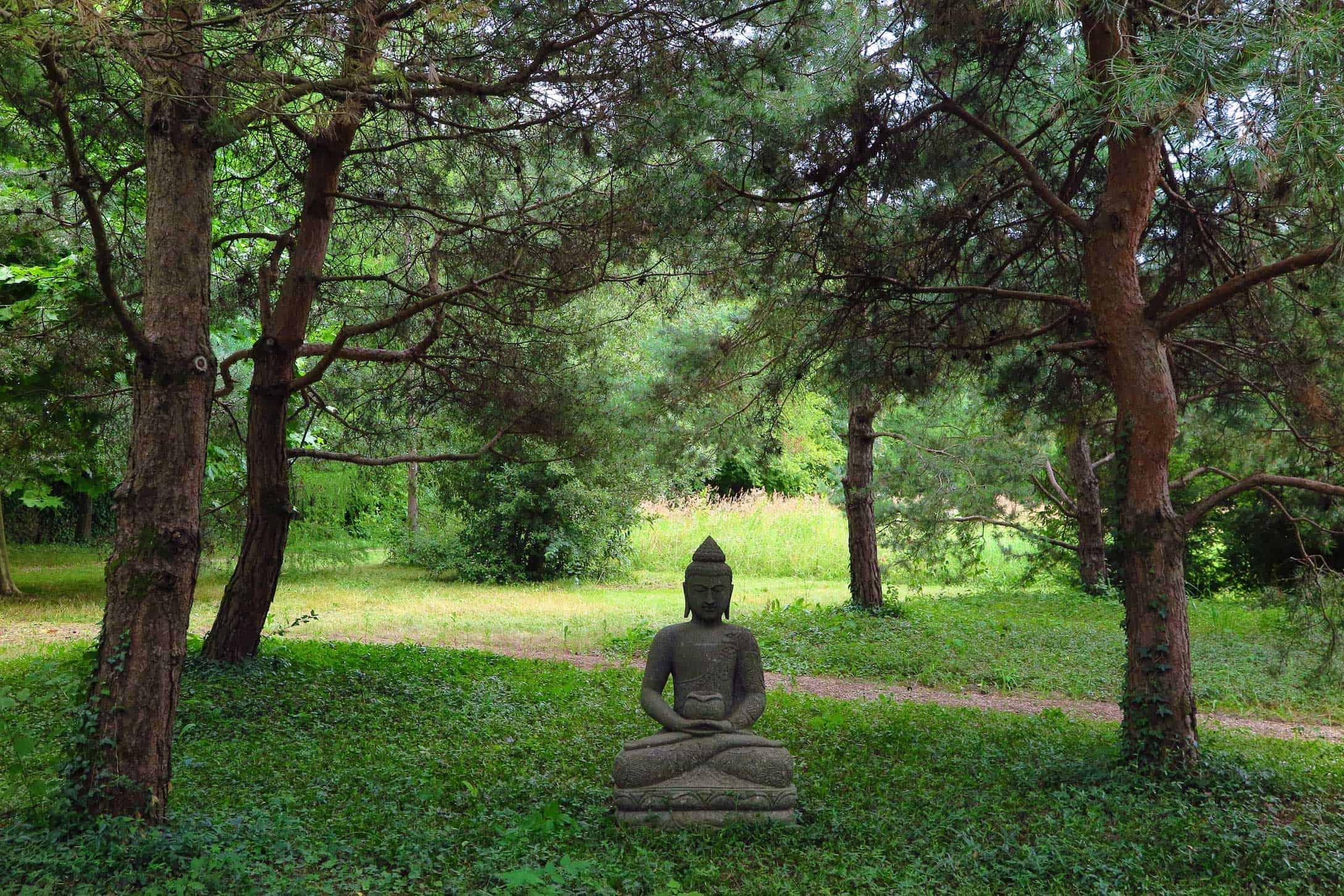 Geneva Forest Buddha